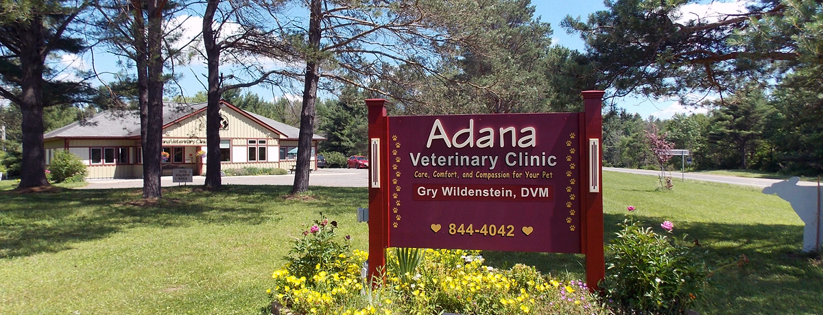 Adana Veterinary Clinic