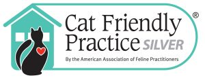 Cat Friendly Pratice