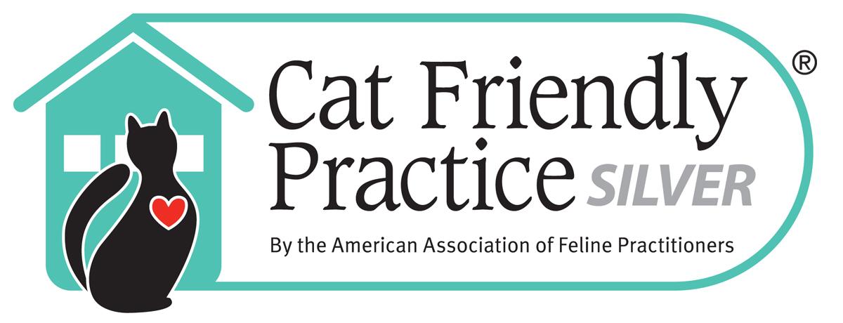 Cat Friendly Pratice
