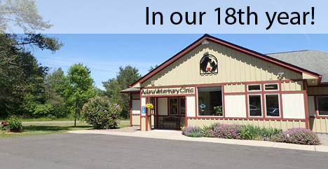In our 18th year!